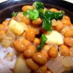 イカ納豆丼(1人前)